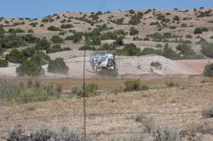 The enemy of the Amercian Wild Horse
