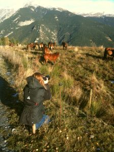 Terry Fitch in Pyrenees Moutains