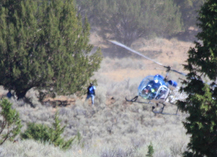 Blm violates own safety policies to dazzle new york times this sciox Gallery