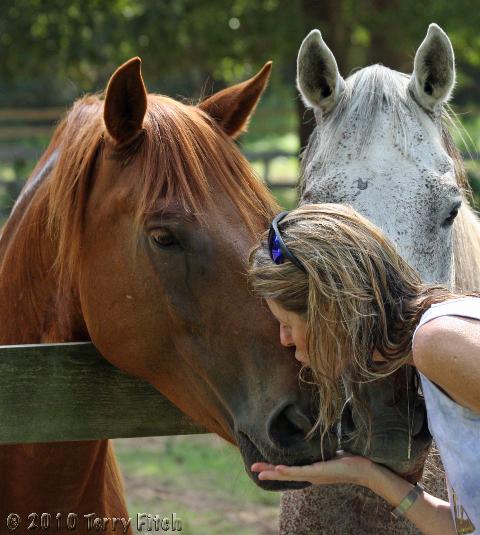 Men having sex with horses foto 564
