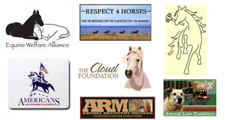 organizations opposing horse slaughter