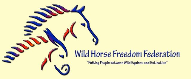 Logo-yellowbkgd