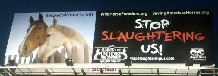 OK City Billboard courtesy of Respect 4 Horses and Wild Horse Freedom Federation