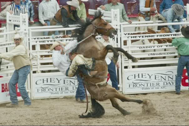 http://rtfitch.files.wordpress.com/2012/08/rodeo1.jpg