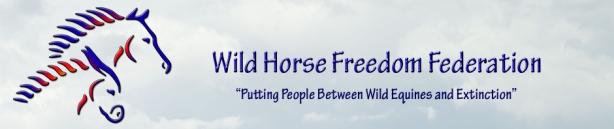 Wild-Horse-Freedom-Federation
