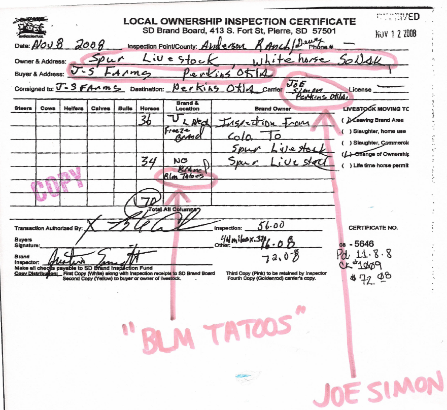 Breaking News Wild Horses Sold To Kill Buyer By BLM Contractor - Sample invoice for tree removal
