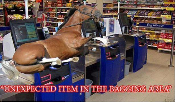 unexpected_horse_in_bagging_area_horsemeat_horseburger