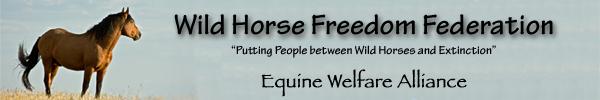 EWA and WHFF
