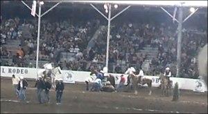 horse_collision