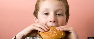 Toxic Burgers Enter Human Food Chain