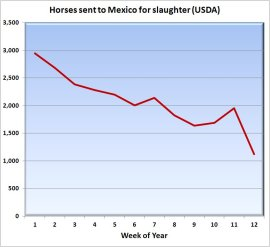 Slaughter Graph