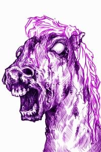 BLM's public version of America's Wild Horse