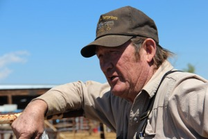 Tom Davis...Dealing death to American federally protected wild horses