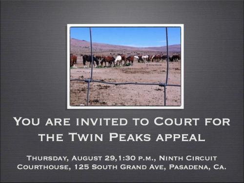 Twin Peaks Hearing