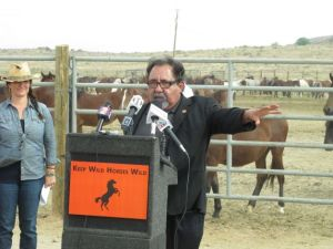 Rep. Raul Grijalva, D-Ariz., talks to reporters after touring a U.S. Bureau of Land Management corral holding more than 1,000 wild horses recently rounded up on federal land, Wednesday, Sept. 4, 2013, in Palomino, Nev. Grijalva said he wants to work with BLM managers to overcome decades of mismanagement of the horses and fix outdated roundup policies he says prioritize livestock over mustangs. . Photo: Scott Sonner