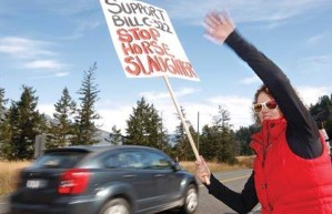 A protester waves at passing cars honking to stop horse slaughter in Canada ~ Photograph by: Hugo Yuen , Kamloops Daily News