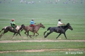 Mongolrace