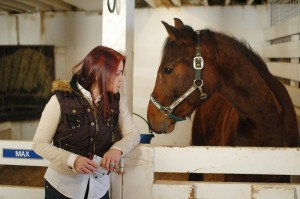 Priscilla Presley is taking back the Graceland Challenge Trophy that has been given annually at the nation's premier walking horse competition because she said she cannot support abuse of show horses.(Photo: The Tennessean)