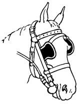horse_with_blinders