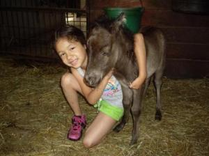 Koal, a miniature horse foal that was rejected by his mother is happy to have human companions. ~ Dawn Fry