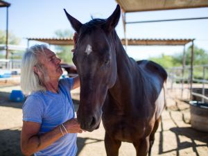 Jim Gath, the owner and chief operator at Tierra Madre Horse Sanctuary, interacts with his horses daily and makes sure they always have enough attention and human interaction. (Photo: Dominic Valente/The Republic, Dominic Valente/The Republic)