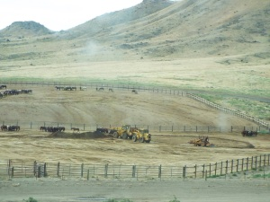 Photo: By Patty Bumgarner Barren shelterless pens, warehouse 1,100 wild horses, in the desert near to the  Burningman festival  site.