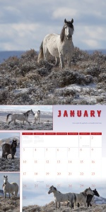 WHFFCalendarJanuary