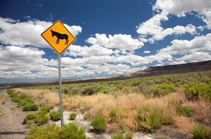 burro-crossing-sign