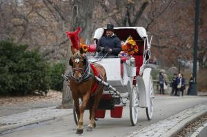 "Mayor de Blasio had vowed to ban the horse carriages in Central Park on ""day one"" of his mayoralty. - SHANNON STAPLETON/Reuters"