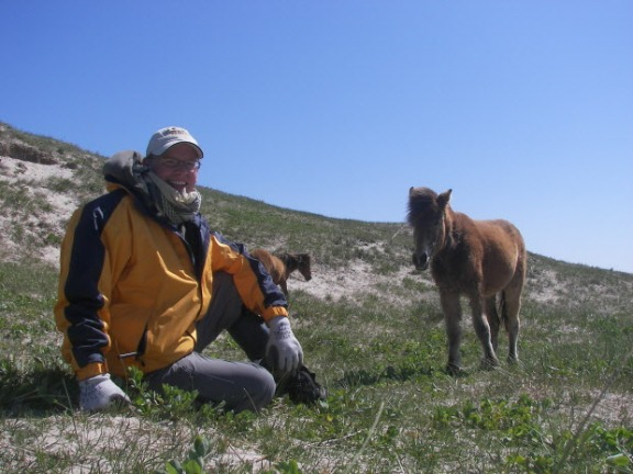 University of Saskatchewan professor Philip McLoughlin observes wild horses on Sable Island. Submitted photo.