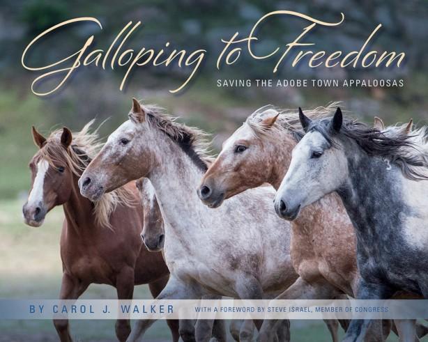 GallopingToFreedomCoverWeb2-1024x819