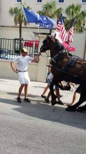 Injured Horse