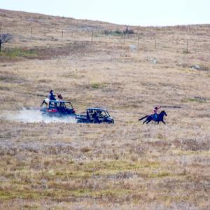 "Crow Creek Spirit riders being chased down by DAPL security last Thursday 10/27/16. Here you can see the courage and strength both riders and horses have! They escaped and made it home safely! Original photo by Standing Rock Rising ""I just added edit to the photo to brighten it up"""
