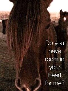 Do You Have Room in Your Heart