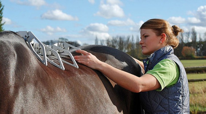Read more: http://www.horsetalk.co.nz/2016/12/27/new-saddle-christmas-free-fitting-guide/#ixzz4U02mu9N4 Reuse: Interested in sharing with your readers? You are welcome to use three or four paragraphs, with a link back to the article on Horsetalk. Follow us: @HorsetalkNZ on Twitter | Horsetalk on Facebook Measuring the 3-dimensional shape of the horse's back with the Arc Device™.