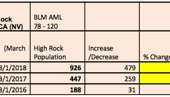 report wild horse population growth straight from the horse s heart